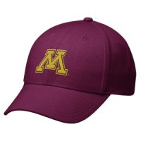 Nike Minnesota Golden Gophers Swoosh Flex Hat - One Size