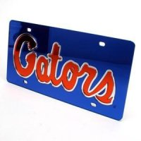 Florida Inlaid Acrylic License Plate -blue Background