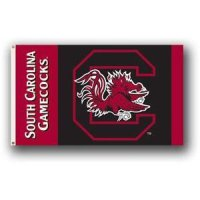 South Carolina 2-sided 3' X 5' Flag