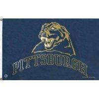 Pittsburgh Panthers 3 X 5 Banner Flag