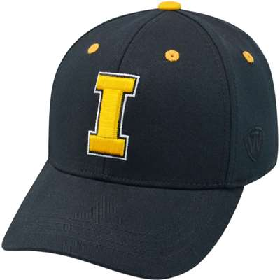Iowa Hawkeyes Top of the World Rookie One-Fit Youth Hat - Black