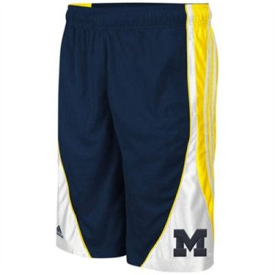 Adidas Michigan Wolverines Flash Short