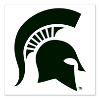 Michigan State Spartans Temporary Tattoo - 4 Pack