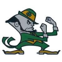 Notre Dame Fighting Irish Die-Cut Transfer Decal - Mascot