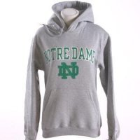 Notre Dame Hooded Sweatshirt - Notre Dame Arched Above Interlocking Nd - By Champion - Heather