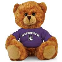 Northwestern Wildcats Stuffed Bear