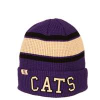 Northwestern Wildcats Zephyr Women's Legendary Pom Knit Beanie
