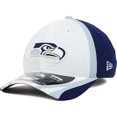 huge selection of 1b962 d8708 Seattle Seahawks New Era NFL 2014 39Thirty Training Camp Hat