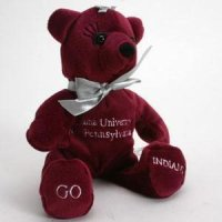 Indiana Of Pennsylvania Girl Bear By Campus Originals