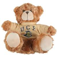 Central Florida Knights Stuffed Bear